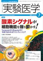 実験医学:酸素シグナルが細胞機能を揺り動かす!〜NormoxiaからHypoxiaまで全身で行われるファインチューニング