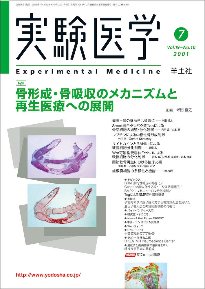 骨形成・骨吸収のメカニズムと再生医療への展開