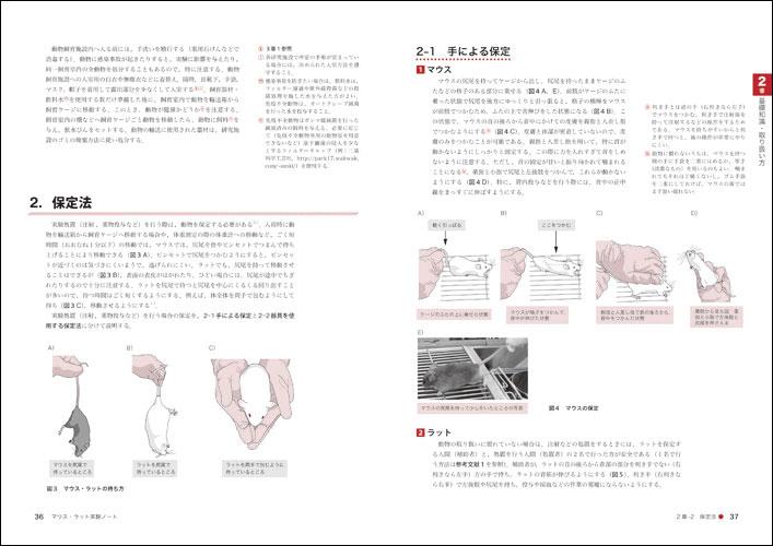 マウス・ラット実験ノート